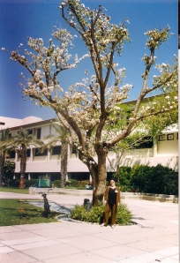 1999г. Израиль в кибуце на семинаре