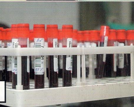 Пробирки в лабораторию